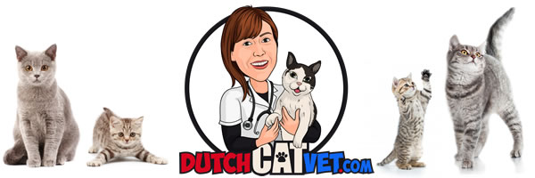 Dutch Cat Vet